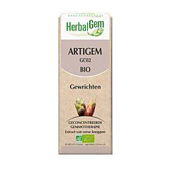 HerbalGem Artigem Complexe Articulations Bio Flacon 50ml