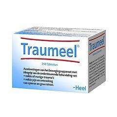Heel Traumeel Douleurs Légères Muscles & Articulations 250 Comprimés