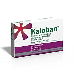 VSM Kaloban 63 tabletten