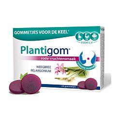 Tilman Plantigom Rode Vruchtensmaak 24 Gommetjes