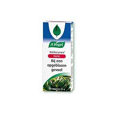 A.Vogel Boldocynara 80 Tabletten