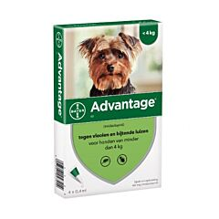 Advantage Hond 40 Spot-On Anti-Vlooien