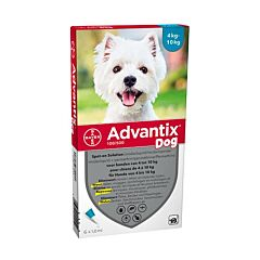Advantix Hond 4