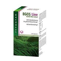 Fytostar EGCG Line 60 Gélules