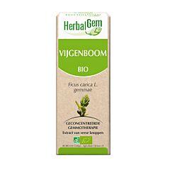 Herbalgem Figuier Macérat Flacon Compte Gouttes 50ml